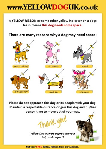 Yellow dog poster